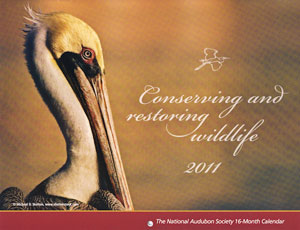 My Photo was Picked for the 2011 National Audubon Society Calendar!!!!!!!