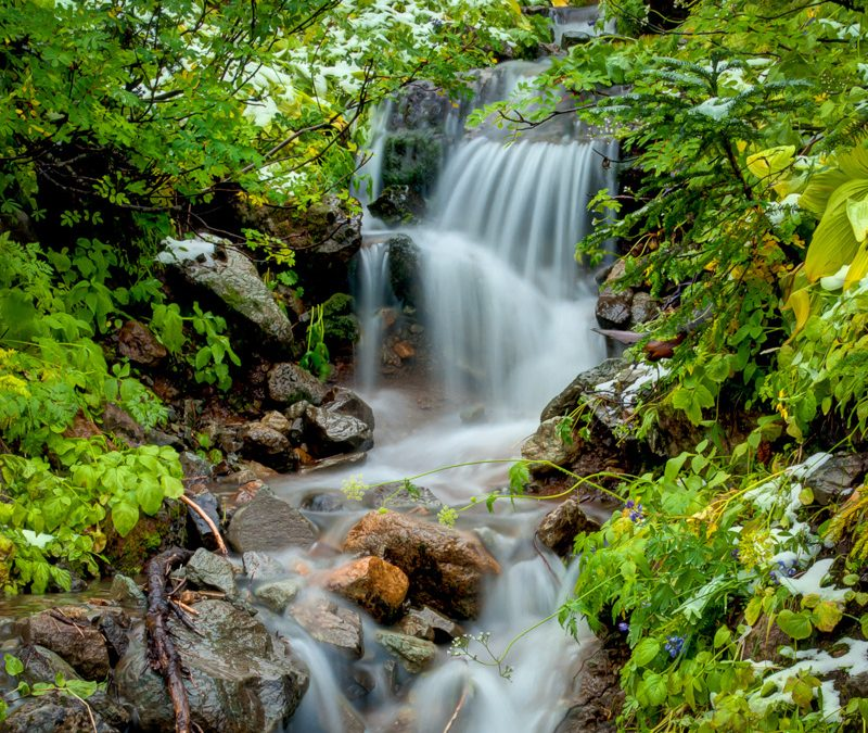 Mountain Stream with a Touch of Snow
