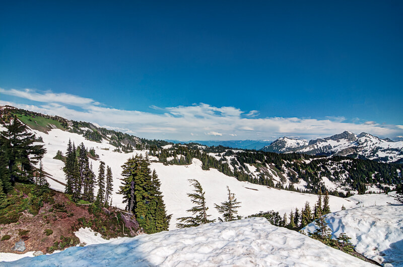 Mountain Nature of the Evergreen State